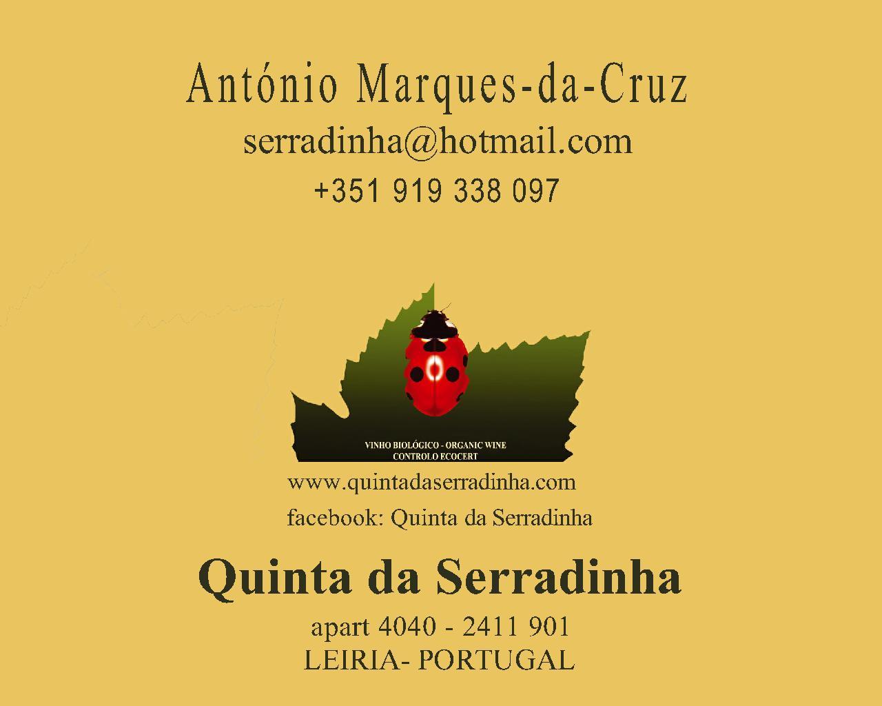 Contactos e Folha site